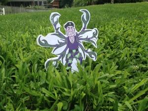 Col. Crabgrass Invades