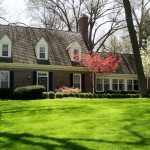 Cary's Corner – 5 Things Lawn Companies Wish You Knew About Our Early Spring Application