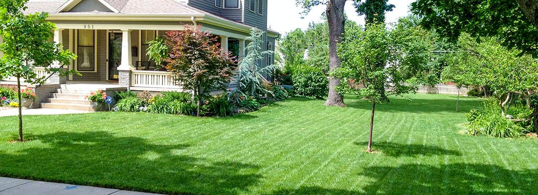 Classic Lawns 1