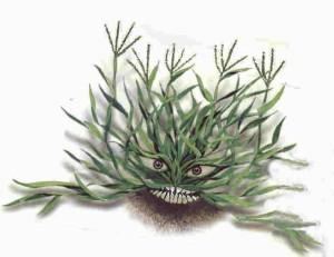 Mean Grass